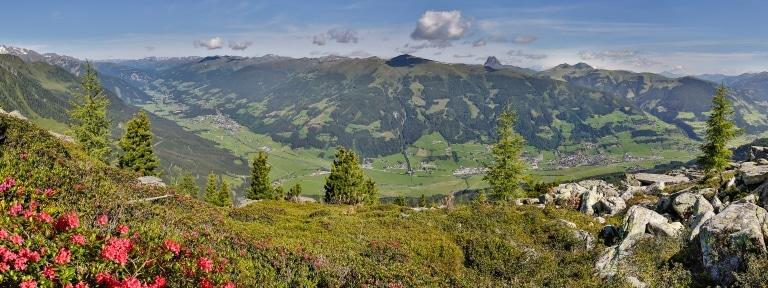 Neukrichen - Bramberg - Almrose